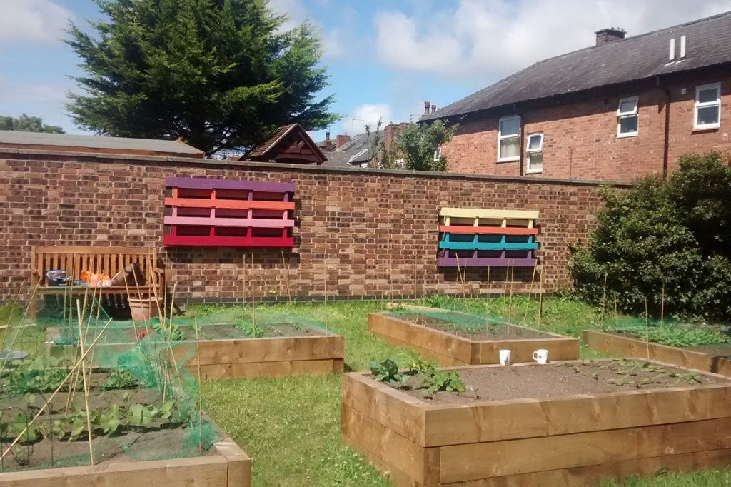 Our Community Garden Has Been Featured on Groundwork